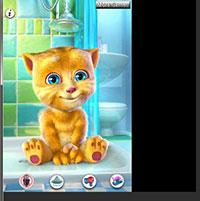 Гра Розмовляючий кіт Том 5: Мовець кошеня!