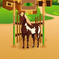 Гра Догляд за кіньми
