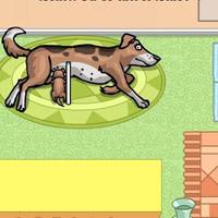 Гра Догляд за тваринами: Мама собачка