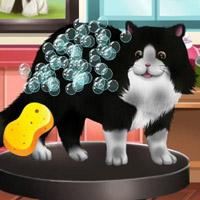 Гра Догляд за тваринами: Звіряча краса 2