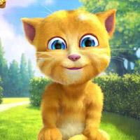 Гра Кішки - Рижик