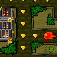 Гра Вогонь і Вода на двох: У світі Пакмана