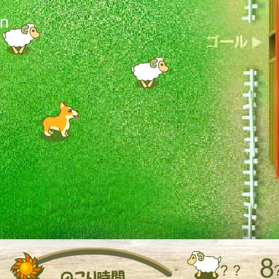 Гра Пастух для овець