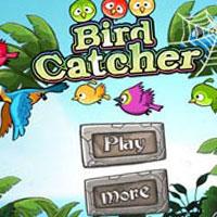 Гра Angry Birds: Ловля птахів