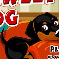 Гра для дівчаток: моя собака