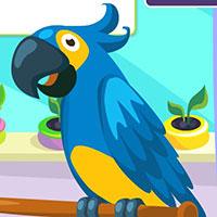 Гра Догляд за Папугою