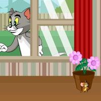Гра Тому вартує Джеррі