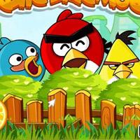Гра Злі пташки: Птах бомбардувальник
