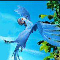 Гра Ріо 2: Політ Голубчика в джунглях