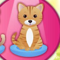 Гра Кішки: Догляд за кішечкою