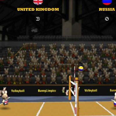 Гра волейбол кроликів