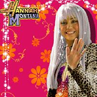 Гра Hannah Montana на фотографії