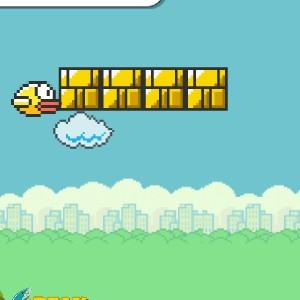 Гра Світ Літаючих Птахів